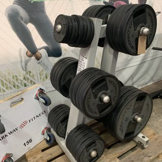 Olympic plate weights & storage tree